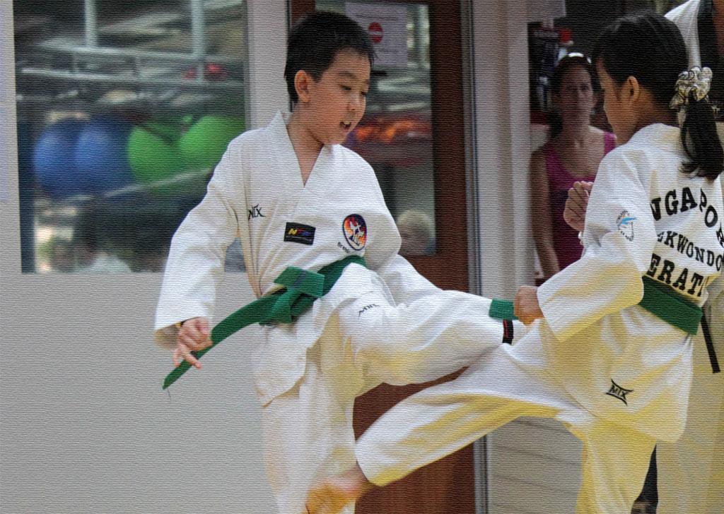 Related Pictures taekwondo poomsae taegeuk il jang wtf